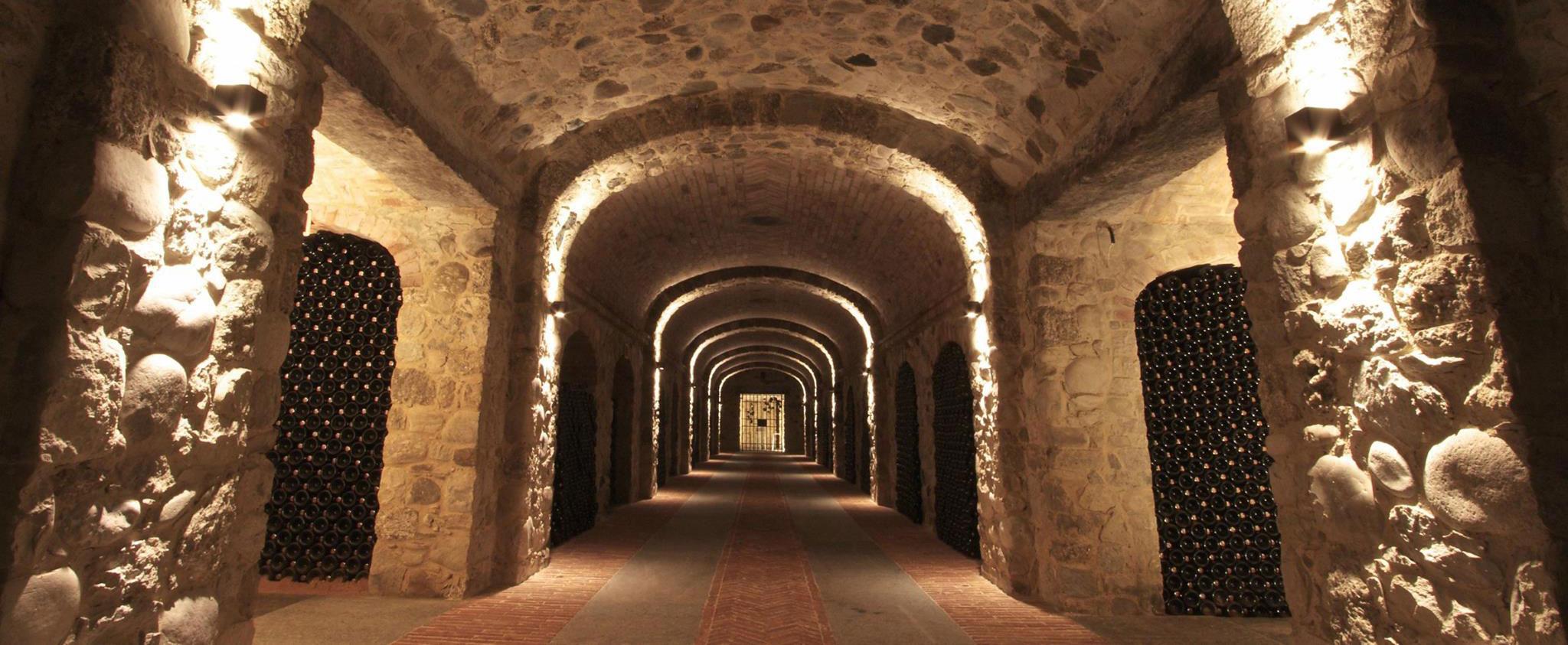 Langhe und Roero Weinprobe