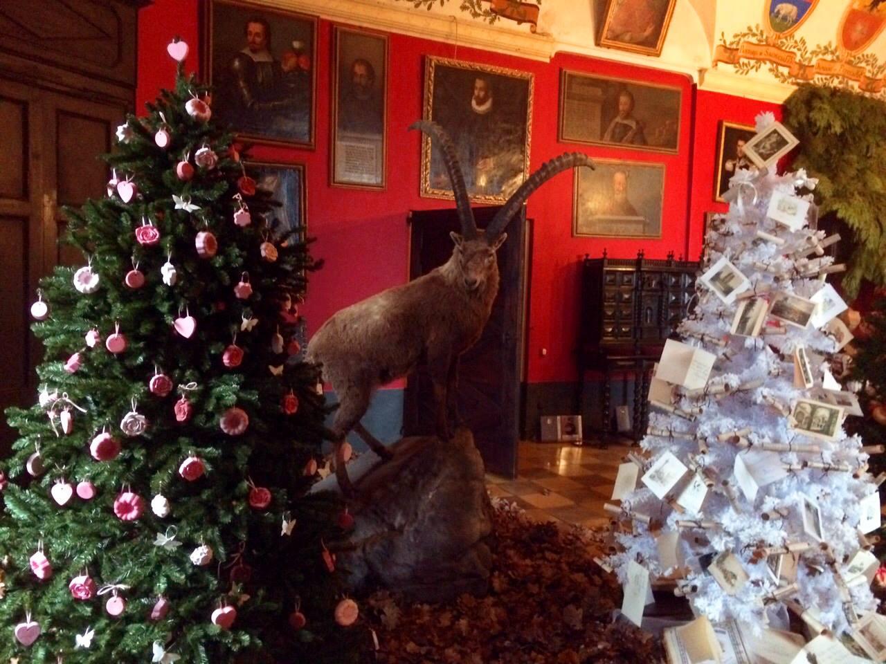 Foto da: Castello di Monticello d'Alba a Natale